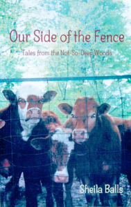 oursideofthefence